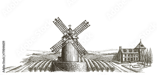 farm. harvest on a white background. sketch - 79844609