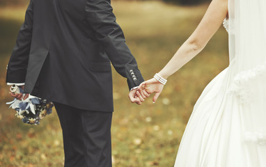 Newlywed couple holding hands, wedding picture.