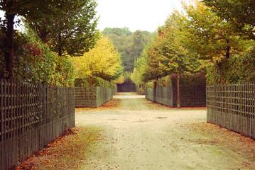 Vintage park, Versailles, France