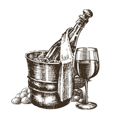 champagne on a white background. sketch