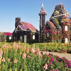 дом из цветов