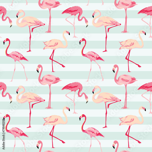 Flamingo Bird Background - Retro seamless pattern in vector © wooster