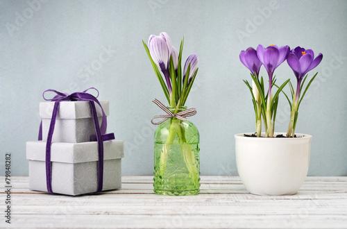 Foto op Aluminium Krokussen Gift boxes and crocus
