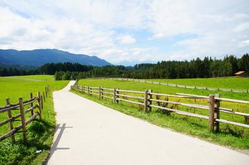 schmale Strasse in grüner Landschaft