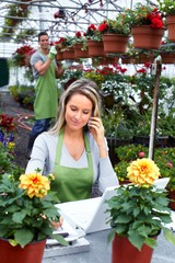 Florist working with flowers in greenhouse.