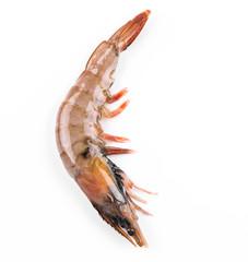 Close up of fresh shrimp.