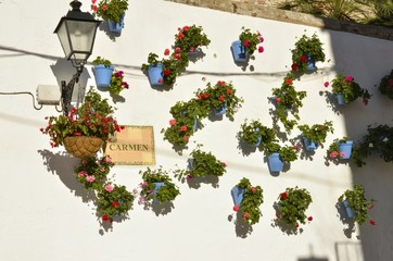 Geranium pots on a white wall in Marbella, Spain