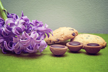 composition hyacinth, cookies, candy