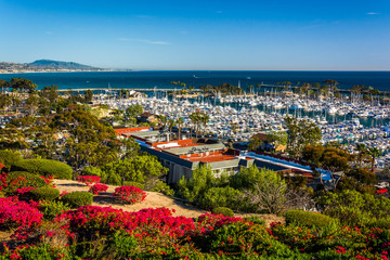 Flowers and view of the harbor from Heritage Park in Dana Point,
