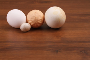 The Domestic eggs Goose and dove egg
