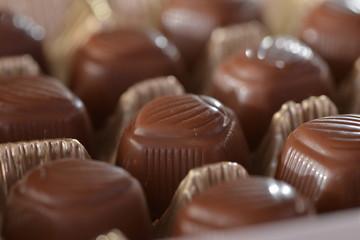 Closeup chocolates placed in plastic holder