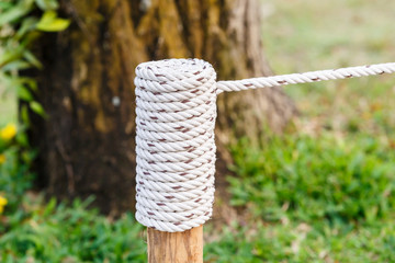 rope knot on wood in garden