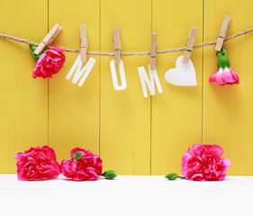 Hanging MOM letters with carnation flowers
