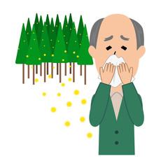 An elderly man blowing nose, allergy caused by cedar pollen