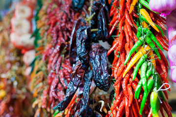 Rows of variety chilli peppers hang together in bunches at