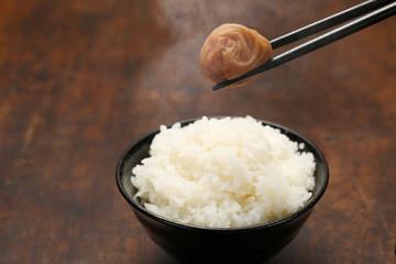 日本の食卓イメージ 炊きたてごはんと梅干