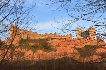 Castillo de Coyanza. Valencia de Don Juan, León.