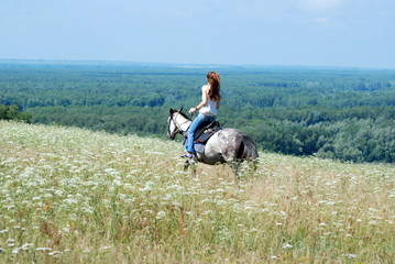 girl riding a horse through the tall grass in summer