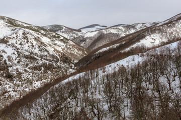 Valle y bosques en invierno en la Sierra de Mampodre, León.