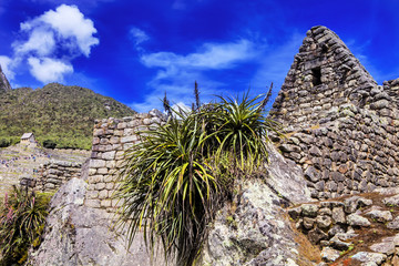 stone buildings of the Machu Picchu