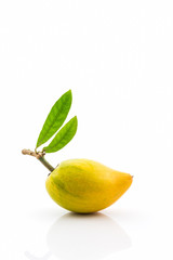 Egg fruit on white background , Canistel, Yellow Sapote .
