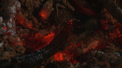 Embers and ashes of big flame