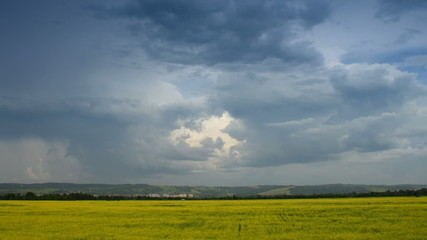 Moving cumulonimbus clouds over yellow field, time lapse.