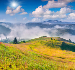 Colorful summer morning in the Carpathian mountain village.