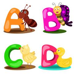 Illustrator alphabet A,B,C,D