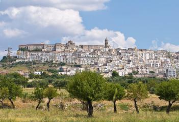 Panoramic view of Minervino Murge. Puglia. Italy.
