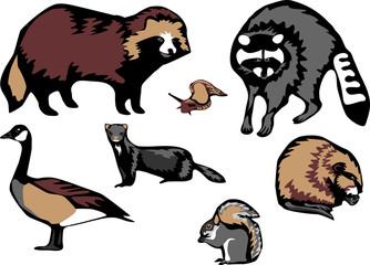 european invasive species of animals