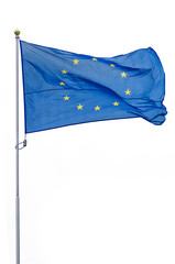 European Union flag on white background