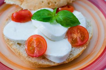 Sandwich with mozzarella cheese