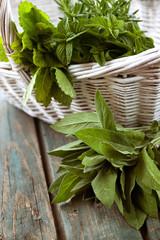 Fresh herbs