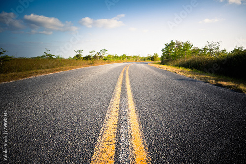 Road in the Everglades National Park, Florida - 79890035