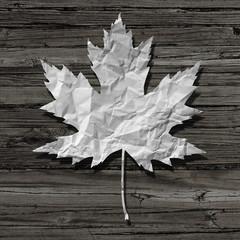 Paper Leaf