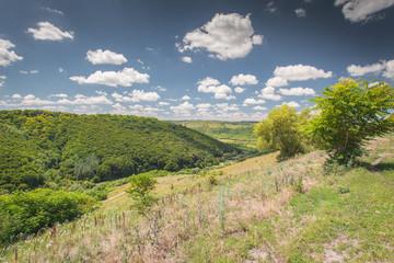 Nature in Western Ukraine