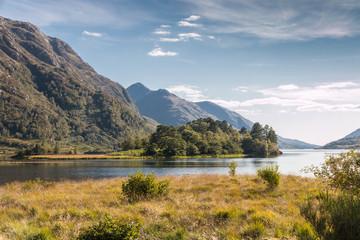 Loch Shiel View