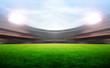 Soccer stadium - 79898492