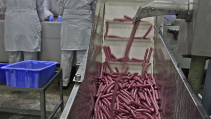 Production of hot dogs in a factory