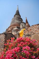 Image of Buddha and pagoda, Ayutthaya province, Thailand