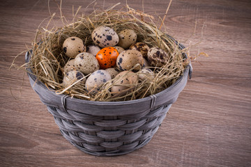 wood basket filled with eggs and one orange egg
