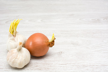 garlic and onion on a wooden table