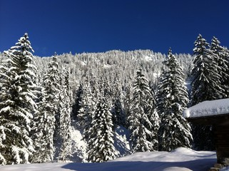 Winter in den Alpen_3