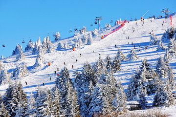 Winter resort Kopaonik ski slopes