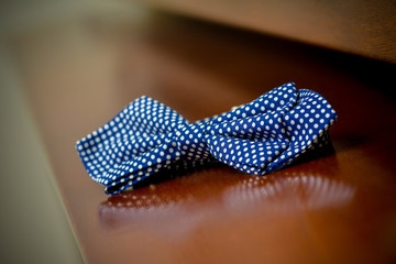 Blue bow tie with polka dots