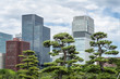 Skyscrapers and japanese garden in Tokyo Japan - 79913254