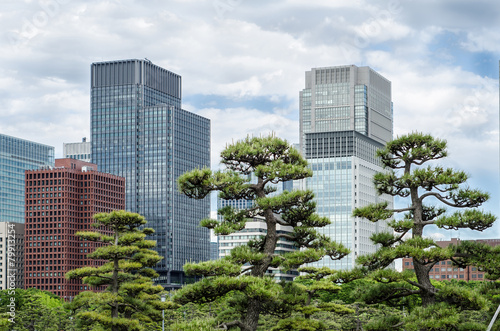 Foto op Plexiglas Tokyo Skyscrapers and japanese garden in Tokyo Japan