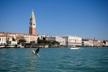 Doge's palace and Campanile on Piazza di San Marco, Venice, Ital