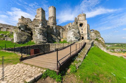 Beautiful castle in Ogrodzieniec near Krakow in spring, Poland - 79921682
